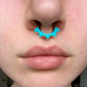Jewelry - Faux Septum Ring